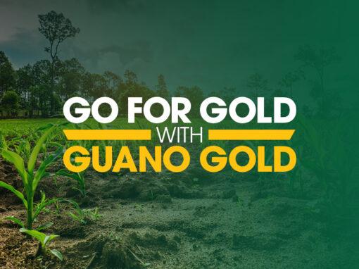 Guano Australia – Go For Gold